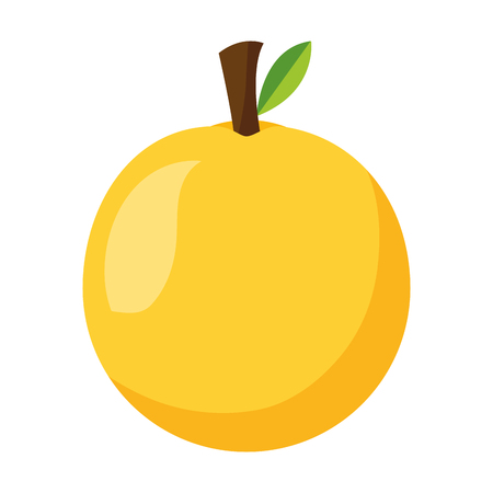 orange fresh healthy food on white background  vector illustration 스톡 콘텐츠 - 112882564