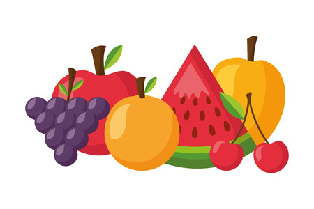 orange mango cherry watermelon apple healthy food vector illustration