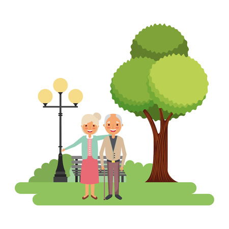 elderly couple together in the park vector illustration