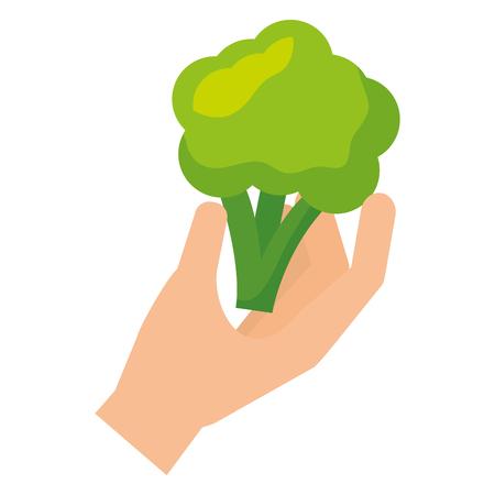 hand holding broccoli healthy food fresh vector illustration Standard-Bild - 127213442