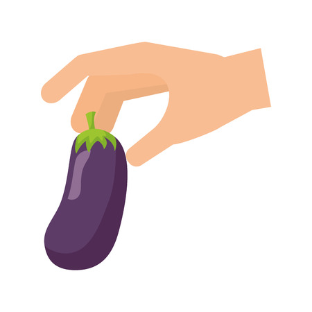hand holding eggplant healthy food fresh vector illustration