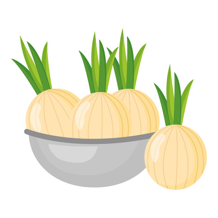 bowl with onion healthy food vector illustration