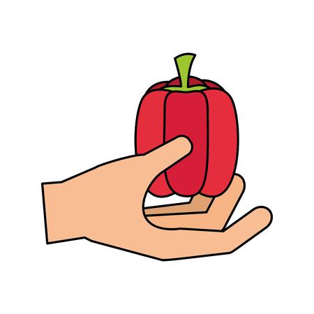 hand holding pepper healthy food fresh vector illustration Иллюстрация