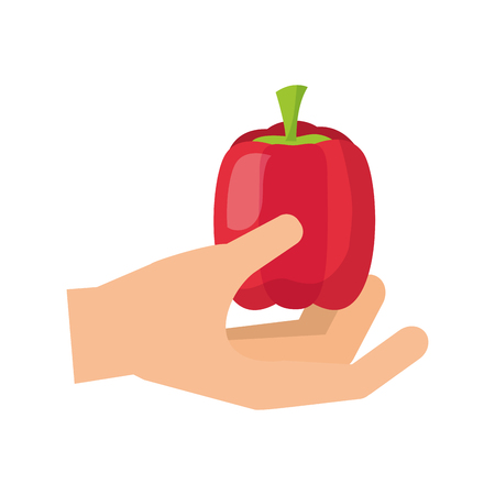 hand holding pepper healthy food fresh vector illustration Çizim