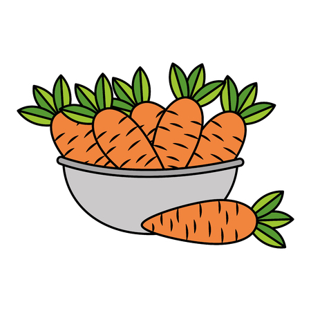 bowl with carrot healthy food vector illustration