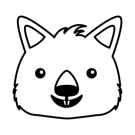 wombat face australian wildlife white background vector illustration