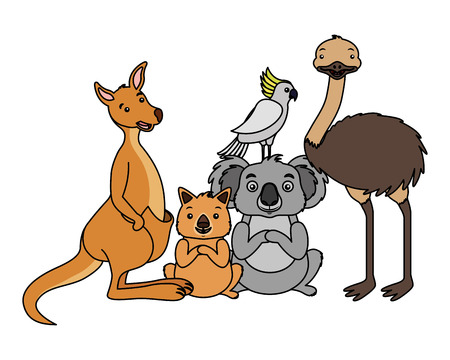 kangaroo koala wombat cockatoo and emu vector illustration 向量圖像