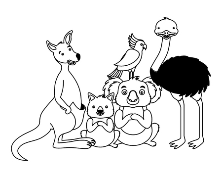 kangaroo koala wombat cockatoo and emu vector illustration 일러스트