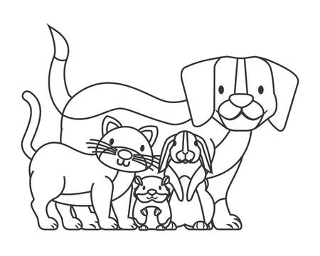 dog cat hamster and rabbit pet shop card vector illustration Illustration