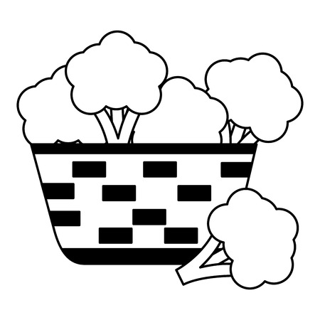 wicker basket with fresh broccoli vector illustration Ilustracja