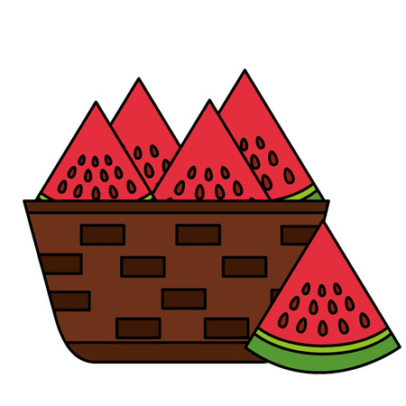 wicker basket with fresh watermelon vector illustration