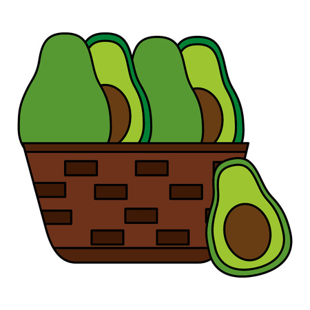 wicker basket with fresh avocado vector illustration