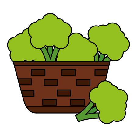 cesto di vimini con illustrazione vettoriale di broccoli freschi