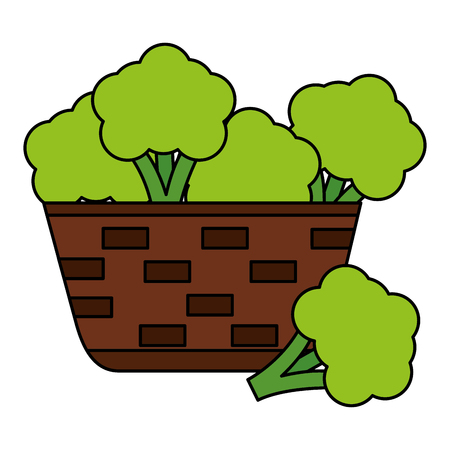 wicker basket with fresh broccoli vector illustration Illusztráció