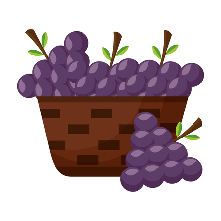 wicker basket with fresh grapes vector illustration