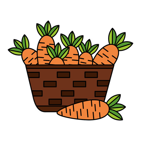 wicker basket with fresh carrots vector illustration vector illustration Banque d'images - 126821417