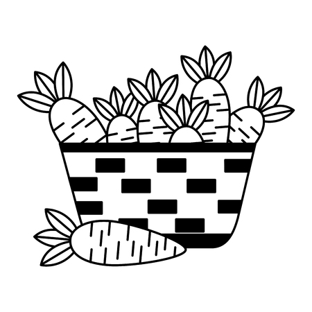 wicker basket with fresh carrots vector illustration vector illustration