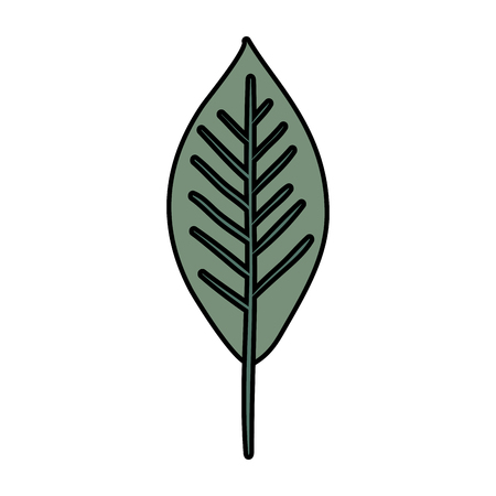 ecology leaf plant icon vector illustration design