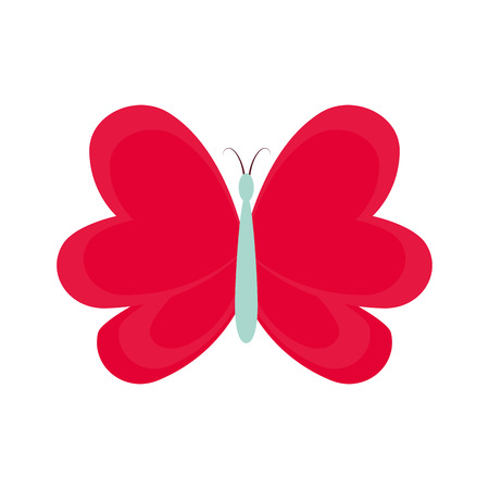 cute butterfly decorative icon vector illustration design