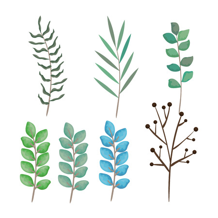 branch with leafs set styles icons vector illustration design 向量圖像