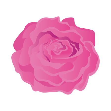 Diseño de ilustración de vector de icono aislado de rosa de belleza