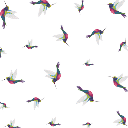 beautiful hummingbirds pattern background vector illustration design