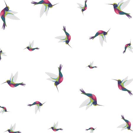 beautiful hummingbirds pattern background vector illustration design
