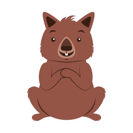 wombat australian fauna on white  background vector illustration