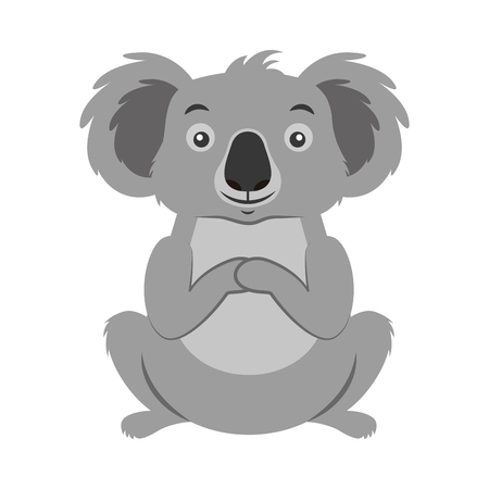 koala australian fauna on white  background vector illustration