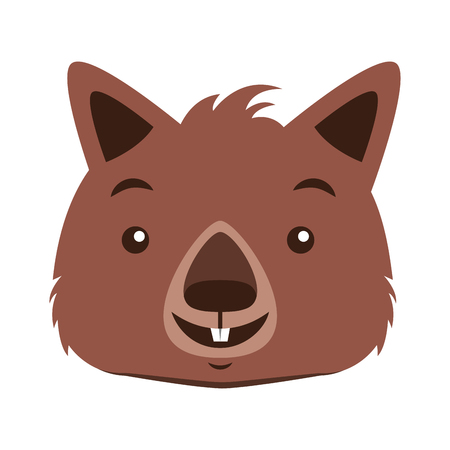 wombat face australian wildlife white  background vector illustration Ilustrace