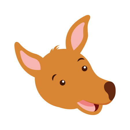 kangaroo face australian wildlife white  background vector illustration Çizim