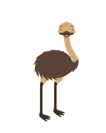 emu fauna on white background vector illustration