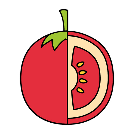 tomato fresh on white background vector illustration Stock Vector - 126463295