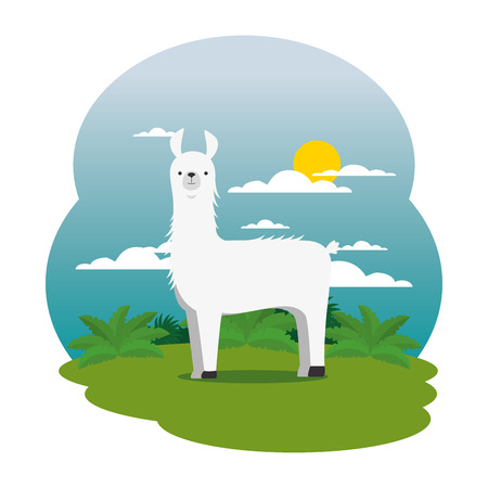 cute llama in the field scene vector illustration design  イラスト・ベクター素材