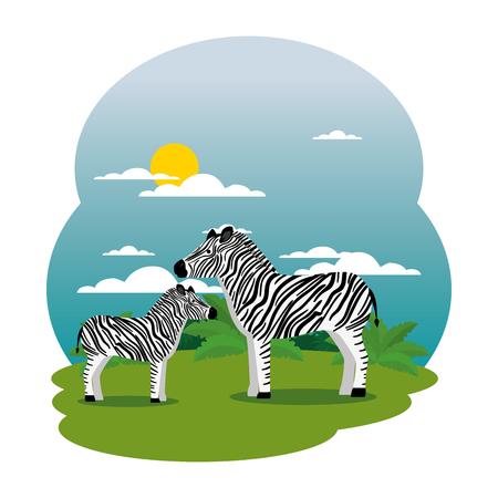 cute zebras family in the field scene vector illustration design Illustration