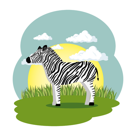 cute zebra in the field scene vector illustration design Çizim