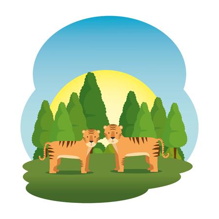 cute tigers couple in the field scene vector illustration design Ilustração