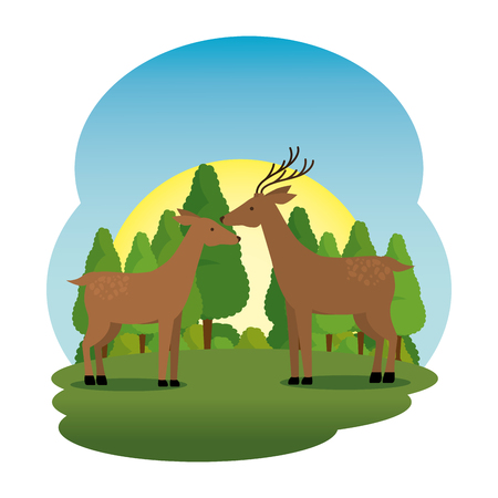 cute deer couple in the field scene vector illustration design