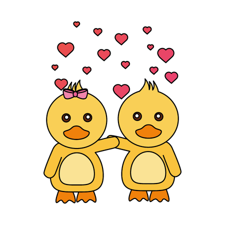 cute couple ducks hearts valentines day vector illustration