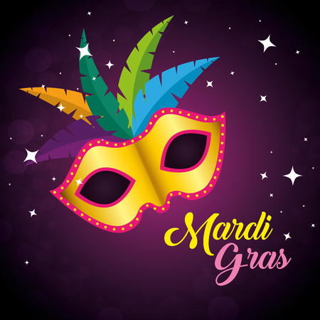 mask with feathers decoration to mardi gras holiday vector illustration