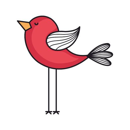 love card with cute bird vector illustration design