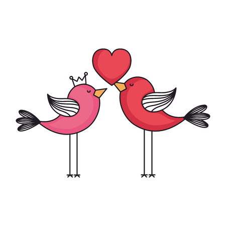 love card with cute birds couple vector illustration design