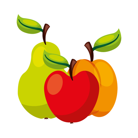 pear apple and mango fruits food health vector illustration