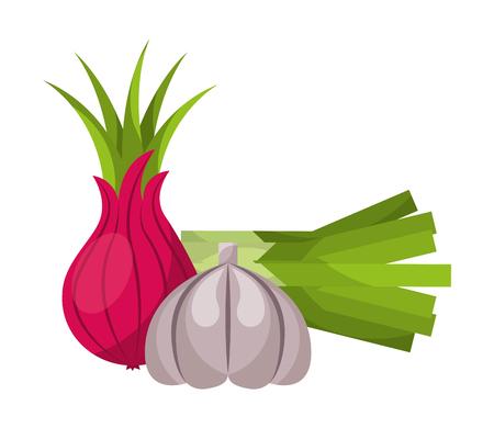 onion garlic fresh vegetables food health vector illustration