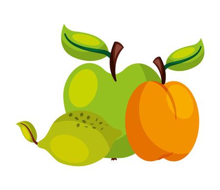 Aprikose Zitrone Apfel Früchte Lebensmittel Gesundheit Vektor-Illustration