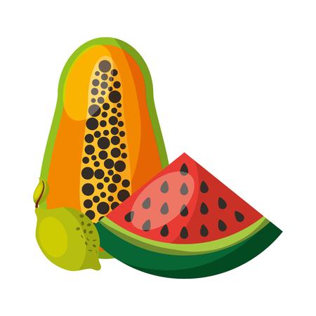 papaya watermelon and lemon fruits food health vector illustration 일러스트