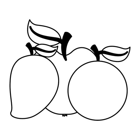 mango apple orange fruits food health vector illustration