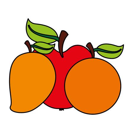 mango apple orange fruits food health vector illustration vector illustration
