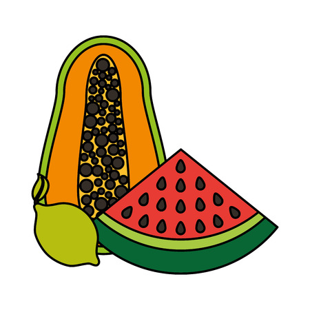papaya watermelon and lemon fruits food health vector illustration vector illustration 일러스트