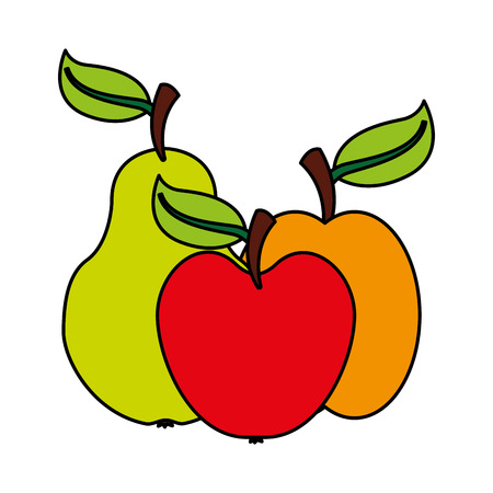 pear apple and mango fruits food health vector illustration vector illustration